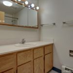 Bathroom with large counter and mirror