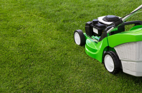 Green lawnmower outside on green lawn