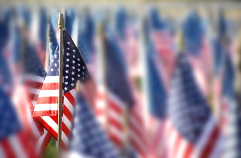 Multiple small america flags, many blurred, with one in focus