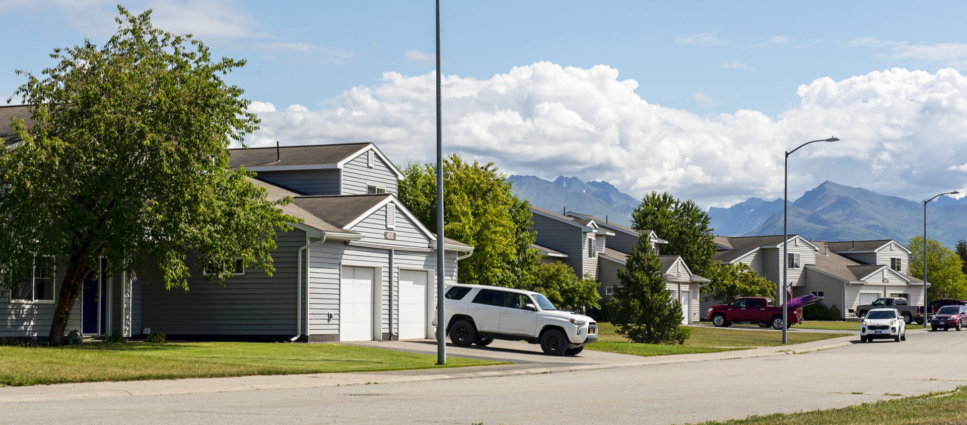 multiple homes surrounded by trees with the Chugach mountain range in the background