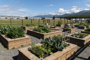 multiple community garden beds with homes, mountains, and recreational areas in the background