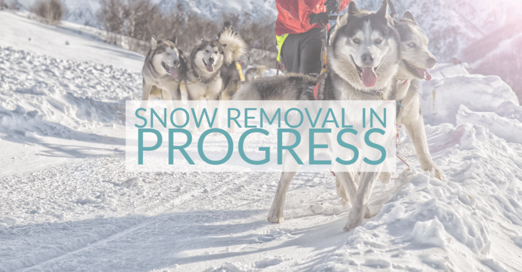 snow removal in progress overlaid on image of Iditarod dogs